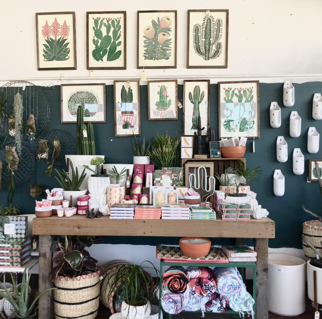 Pottery Furniture And Interior Decorating Inspiration They Have One Of The Largest Selections Succulents Cacti Air Plants I Ever Seen