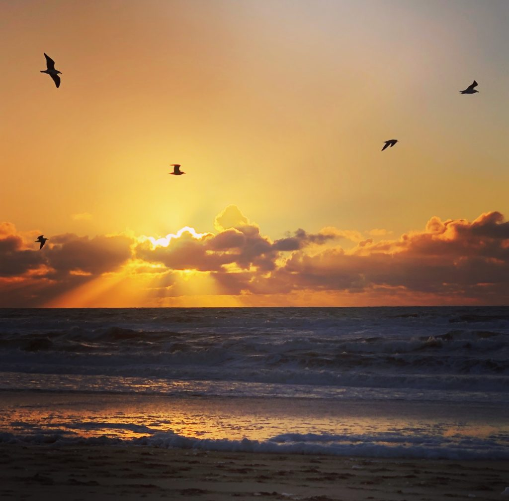 Most Beautiful Sunset Quotes Ever Monterey Farmgirl
